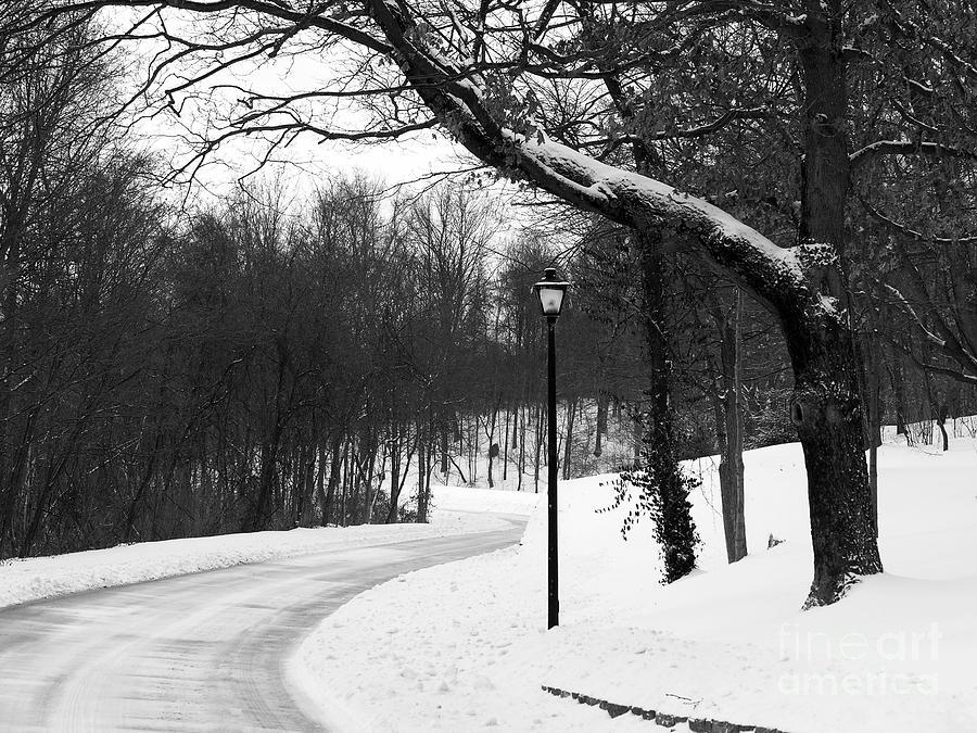 Winter Scene Photograph - Lamp-light Lane by Mel Steinhauer