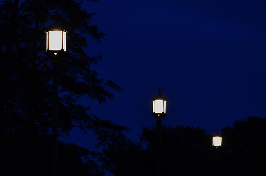Lamps Lit at Night by Anne Boyes