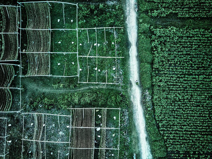 Green Photograph - Land Of Idyllic Beauty by Zhou Chengzhou