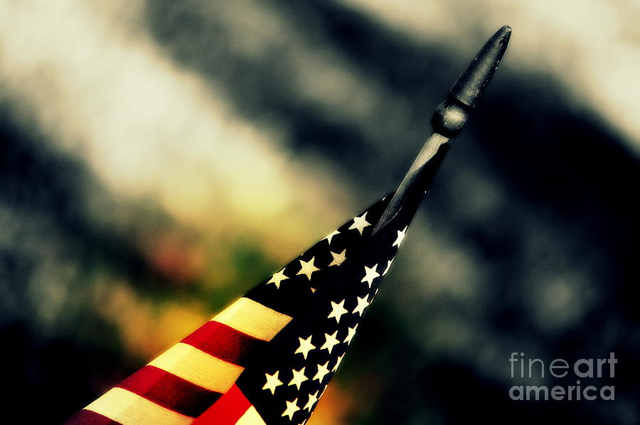 Flag Photograph - Land Of The Free - 2 by Susanne Van Hulst