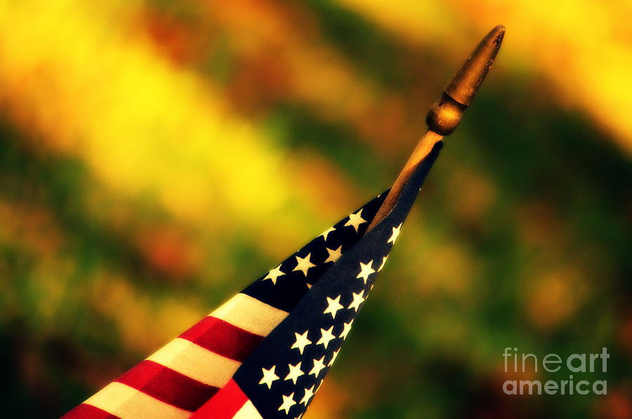 Flag Photograph - Land Of The Free by Susanne Van Hulst