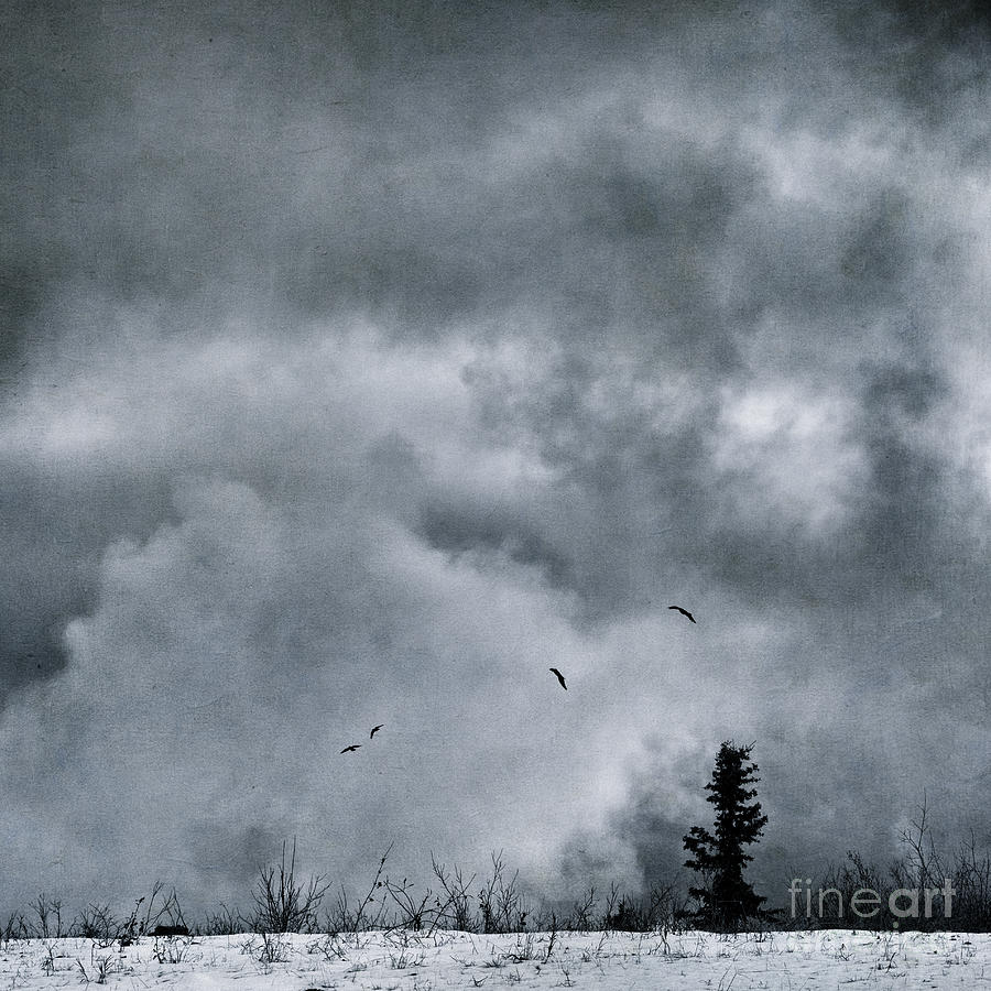 Top Of The World Highway Photograph - Land Shapes 5 by Priska Wettstein