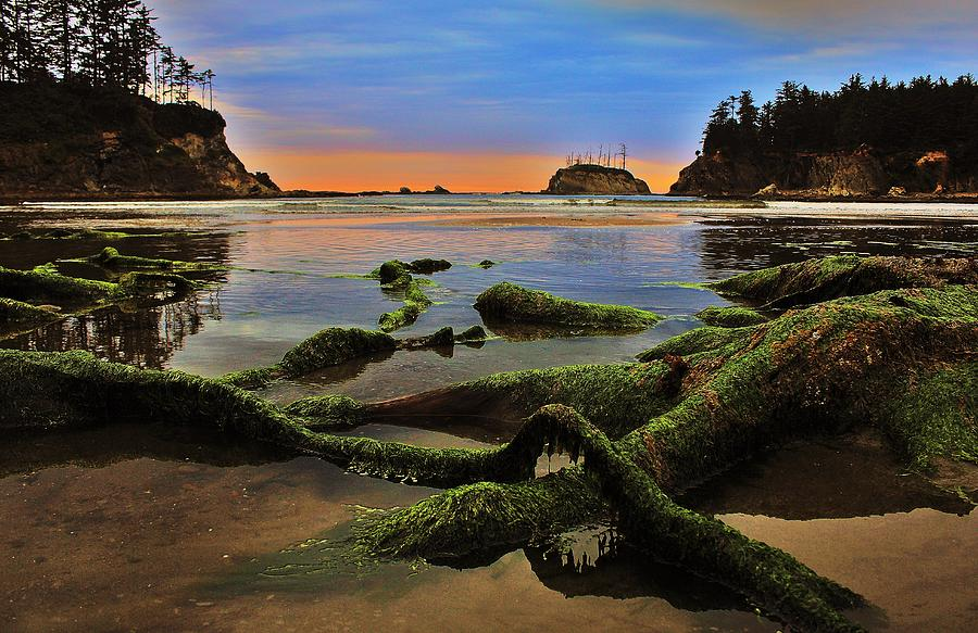 Oregon Photograph - Lands End by Benjamin Yeager