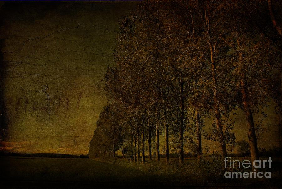 Landscape Photograph - Landscape 14 by Gianmario Masala