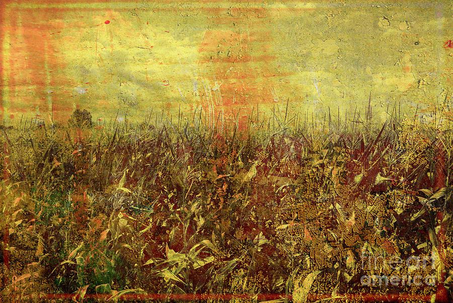 Landscape Photograph - Landscape 4 by Gianmario Masala