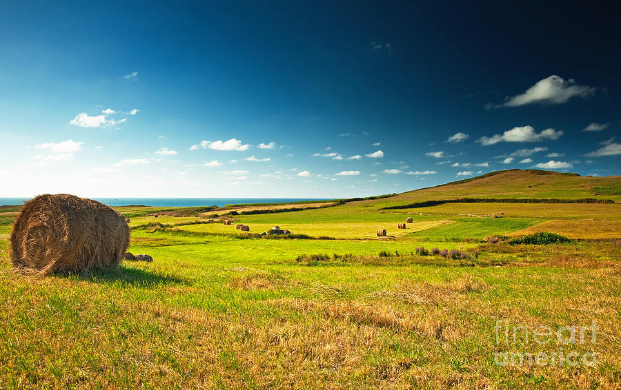 Nice Photograph - Landscape At Summer by Boon Mee
