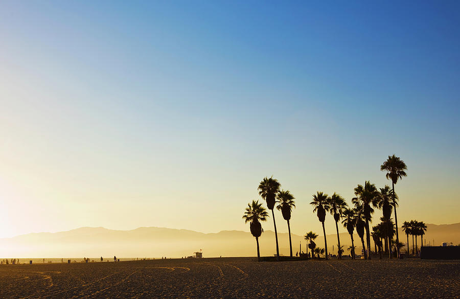 Landscape Image Of Venice Beach Photograph by Bluehill75