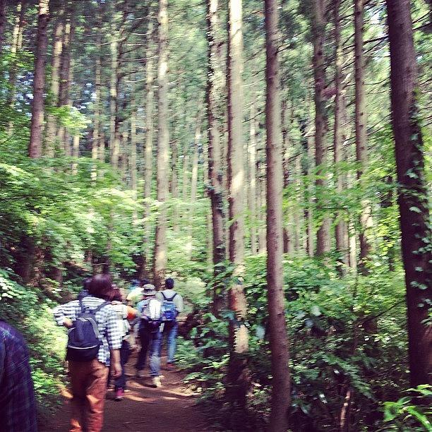 Landscape Photograph - #landscape Mt.takao by Tokyo Sanpopo