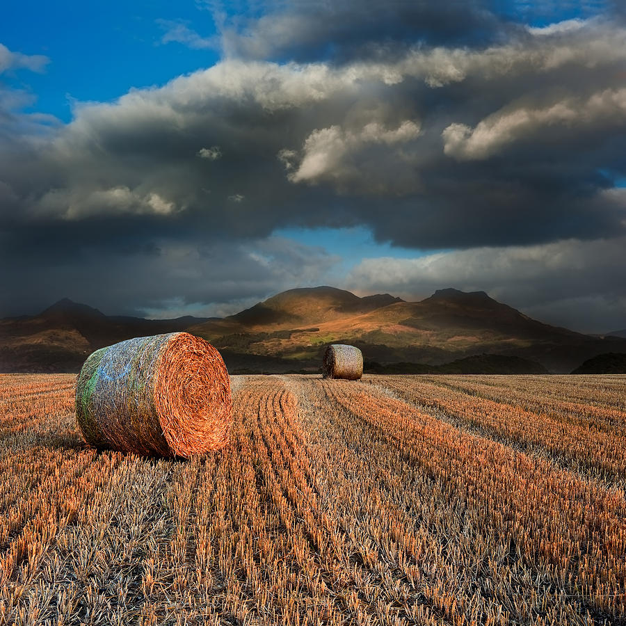 Landscape Photograph - Landscape Of Hay Bales In Front Of Mountain Range With Dramatic  by Matthew Gibson