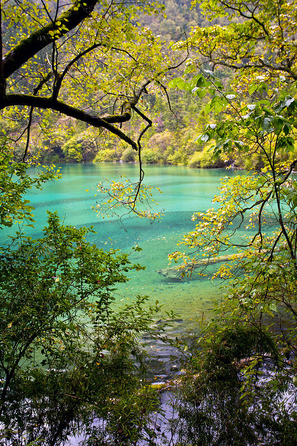 Landscape Photostories Of Tibet Jiuzhaigou Photograph by Sundeep Bhardwaj Kullu sundeepkulluDOTcom