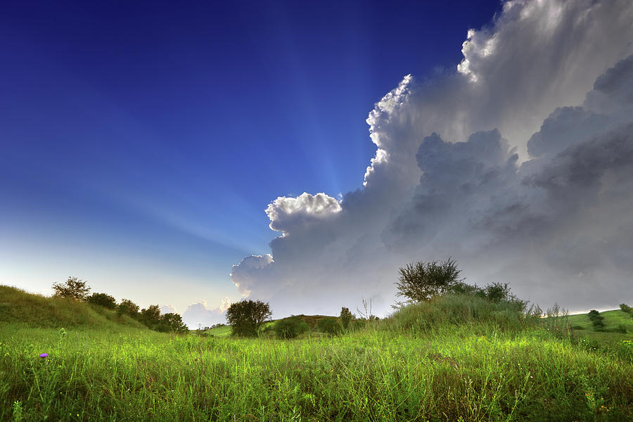Landscape View Of A Green Field And Sky Photograph by Savushkin