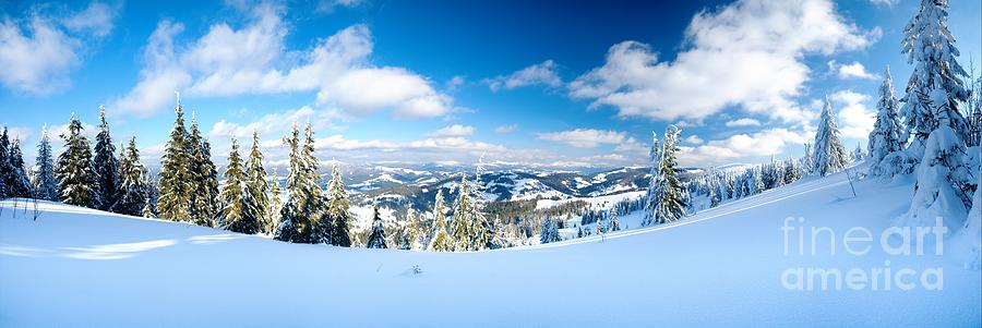 Landscape Photograph - Landscape With Snow Covered Trees by Boon Mee