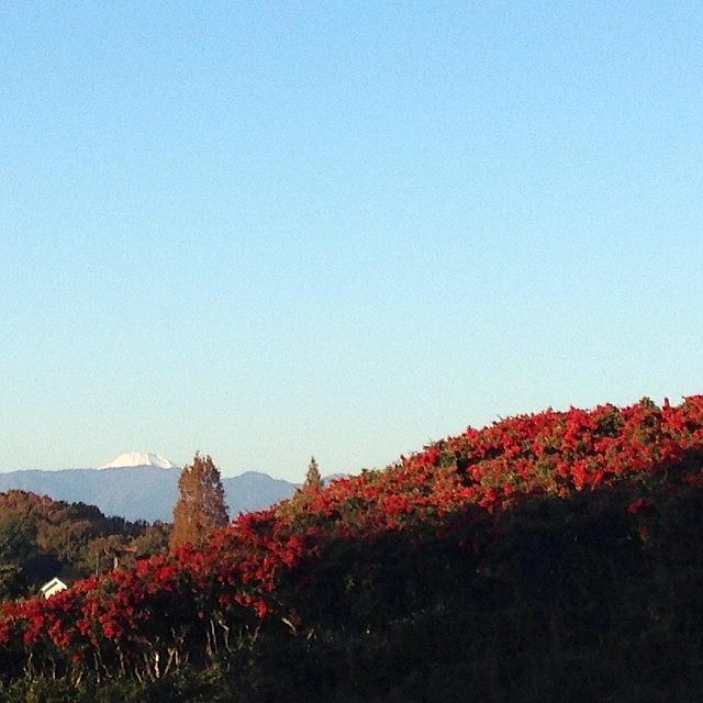 Mt Photograph - #landscape#mt.fuji #japan by Tokyo Sanpopo