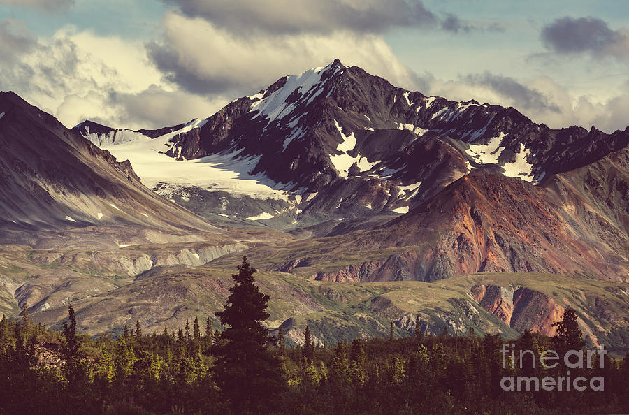 Pond Photograph - Landscapes On Denali Highway.alaska by Galyna Andrushko