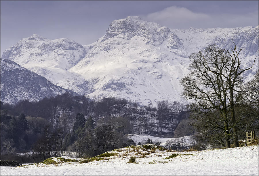 Landscape Photograph - Langdales View From Elterwater. by George Hodlin