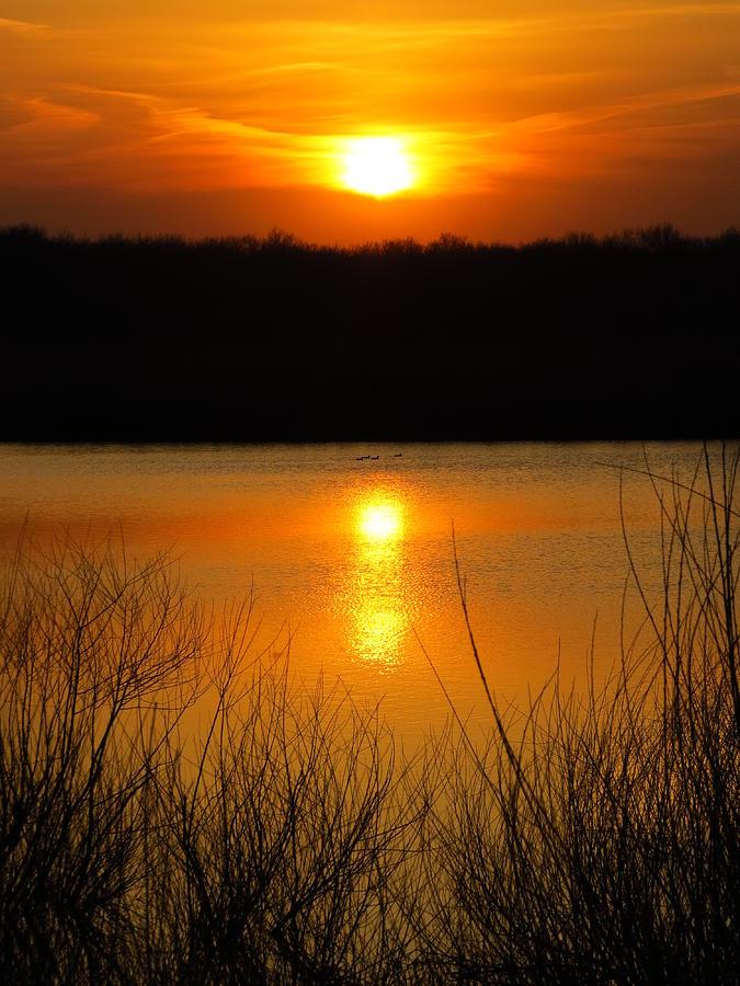 Sunset Photograph - Lanies Hope by Lori Frisch