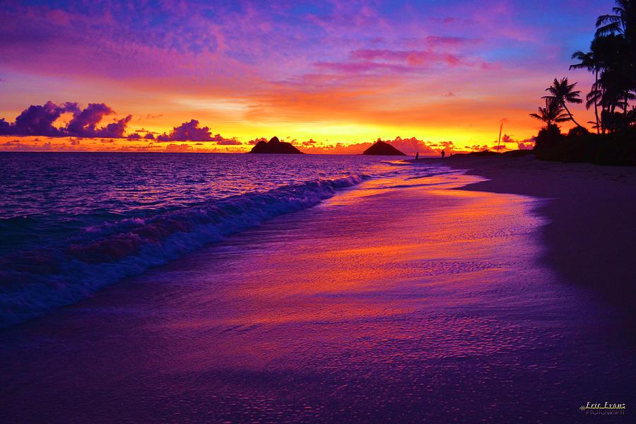 Lanikai Beach Winter Sunrise Reflections In The Sand