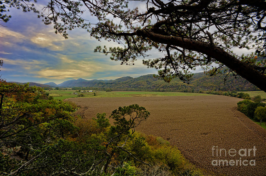 Large Photograph - Large Cornfield In Valley by Dan Friend