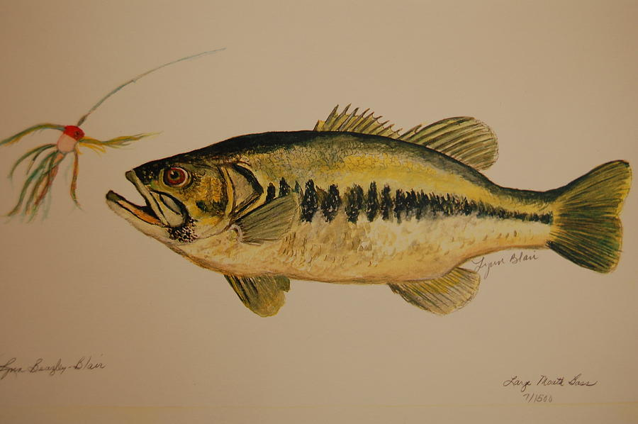 Large mouth bass fish painting by lynn beazley blair for Bass fish painting