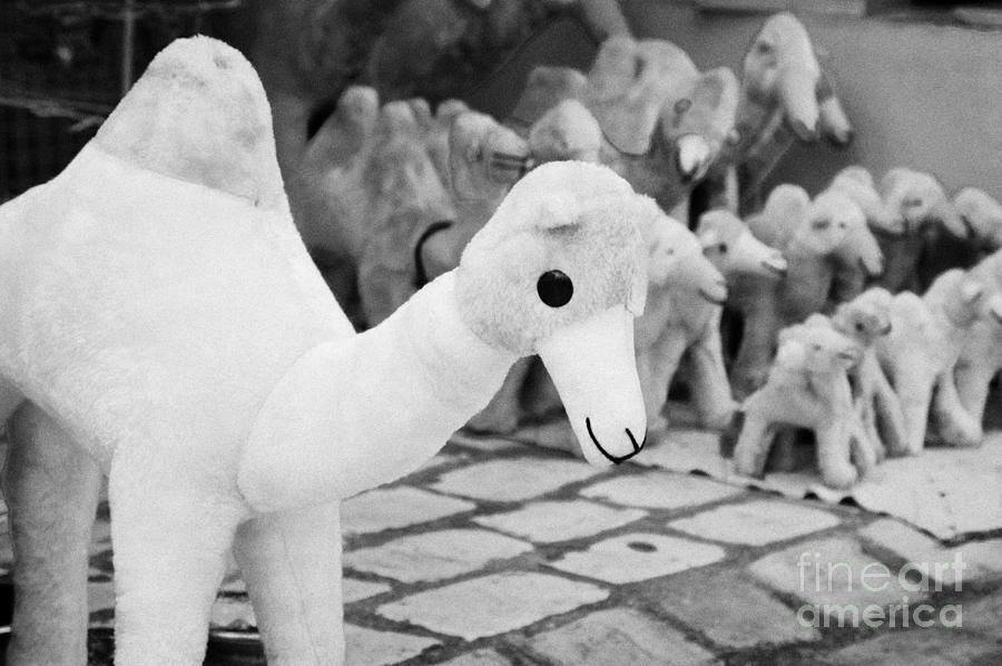 Tunisia Photograph - Large Soft Toy Stuffed Camel Souvenir At Market Stall In Nabeul Tunisia by Joe Fox