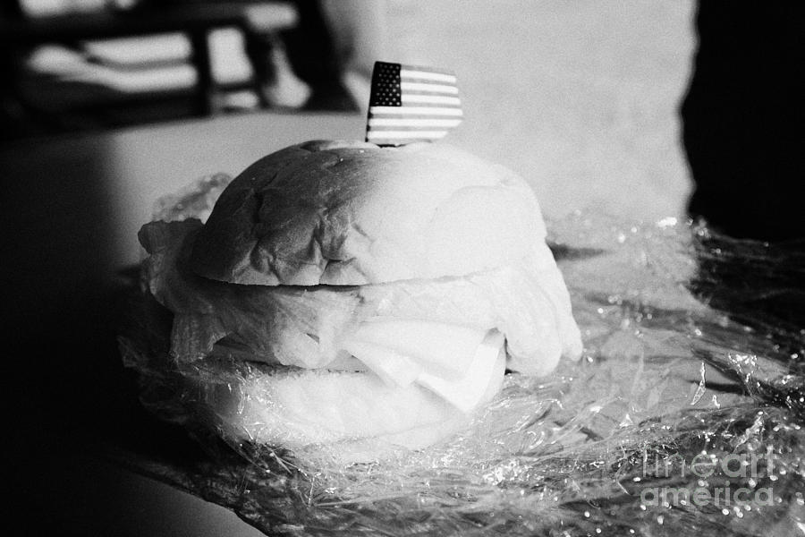 Valley Photograph - Large Turkey Salad Sandwich Wrapped In Cling Film Usa by Joe Fox