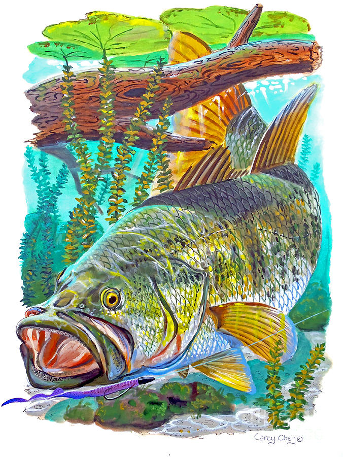 Largemouth bass painting by carey chen for Bass fish painting