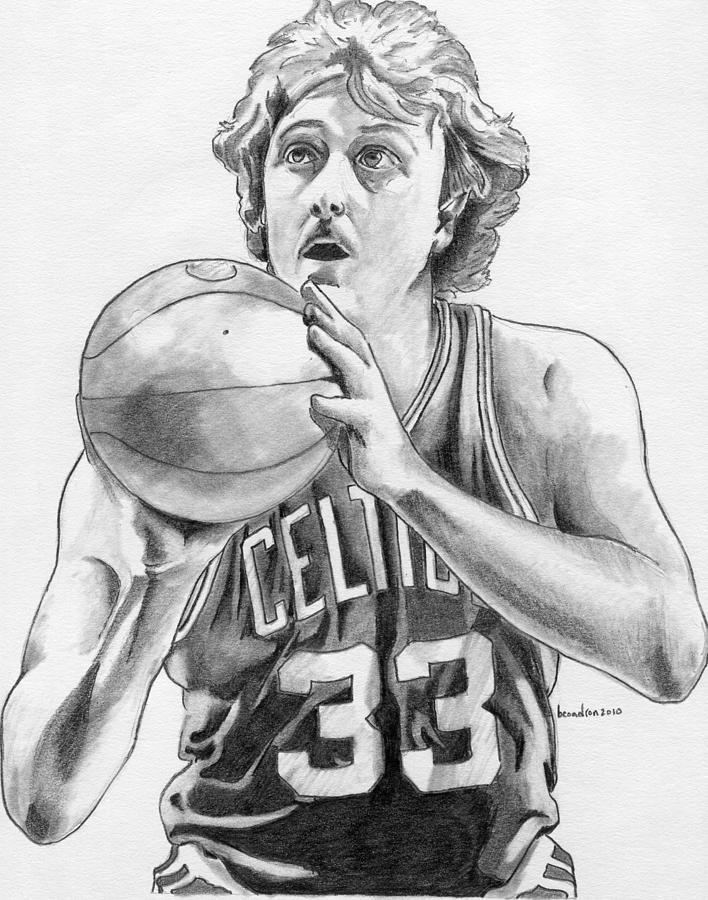 Larry Bird Drawing By Brian Condron