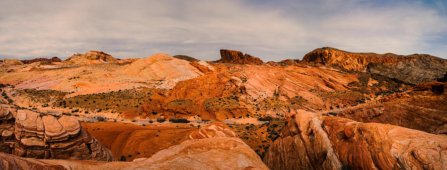 Valley Of Fire State Park Photograph - Las Vegas Nevada Mojave Desert Valley Of Fire Panorama by Silvio Ligutti