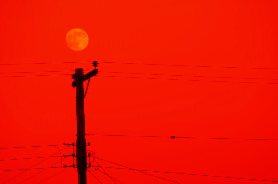 San Diego Photograph - Red Moon Rising by See My  Photos