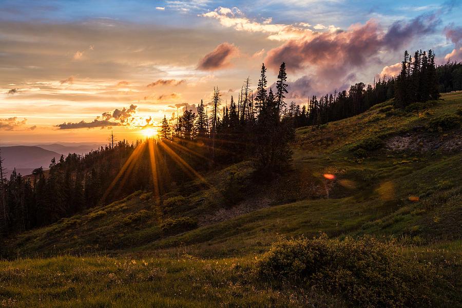 Last Light At Cedar Photograph - Last Light At Cedar by Chad Dutson
