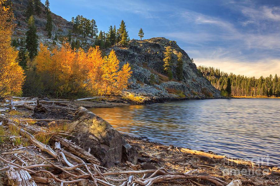 Aspens Photograph - Last Light On Taylor Lake by James Eddy