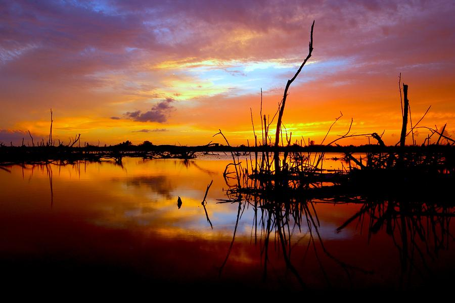 Water Photograph - Last Light by Tracy Welker