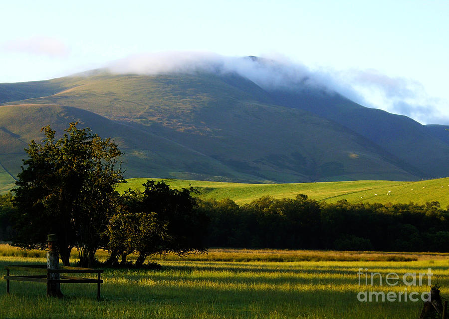 Morning Photograph - Last Of The Morning Mist by Malcolm Suttle