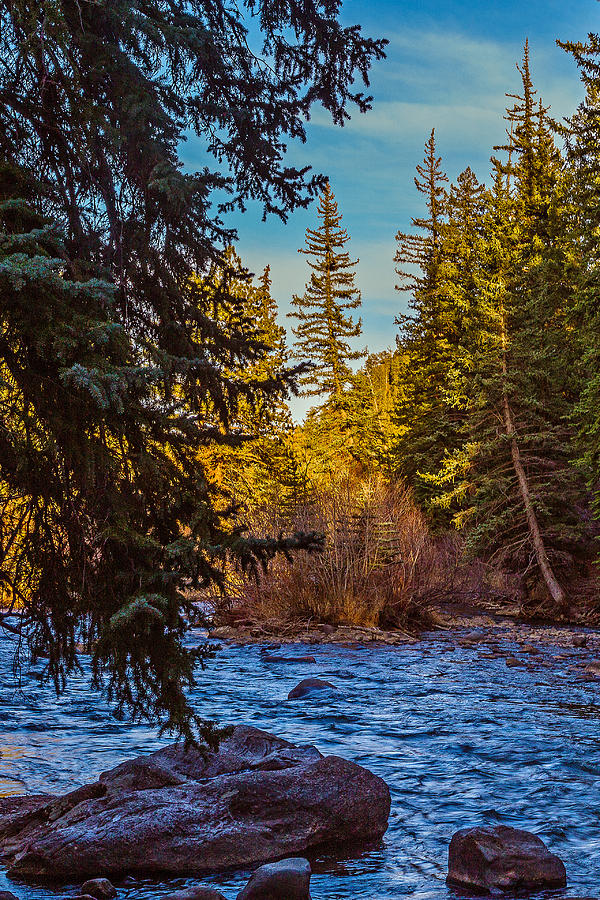 Colorado Photograph - Late Afternoon Along The South Platte by Mike Schaffner