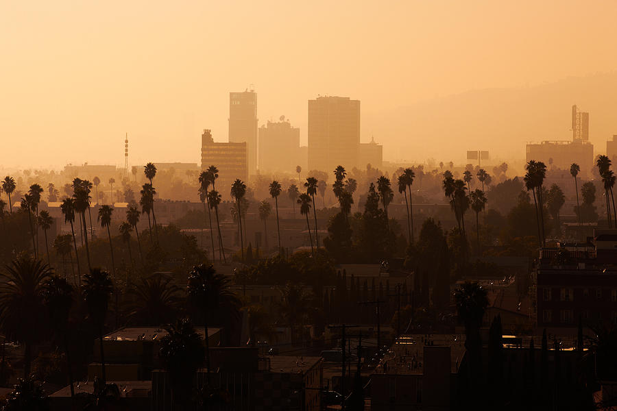 Travel Photograph - Late Afternoon Over Hollywood by Whitman White
