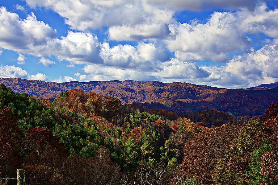 Autumn Photograph - Late Autumn Beauty by Tom Culver