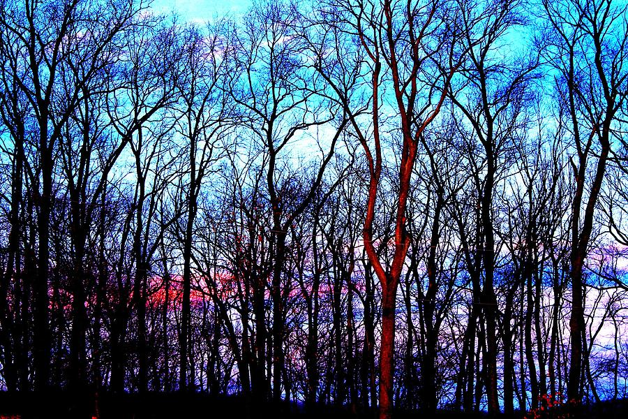 Late Photograph - Late Cold Afternoon by Jose Lopez