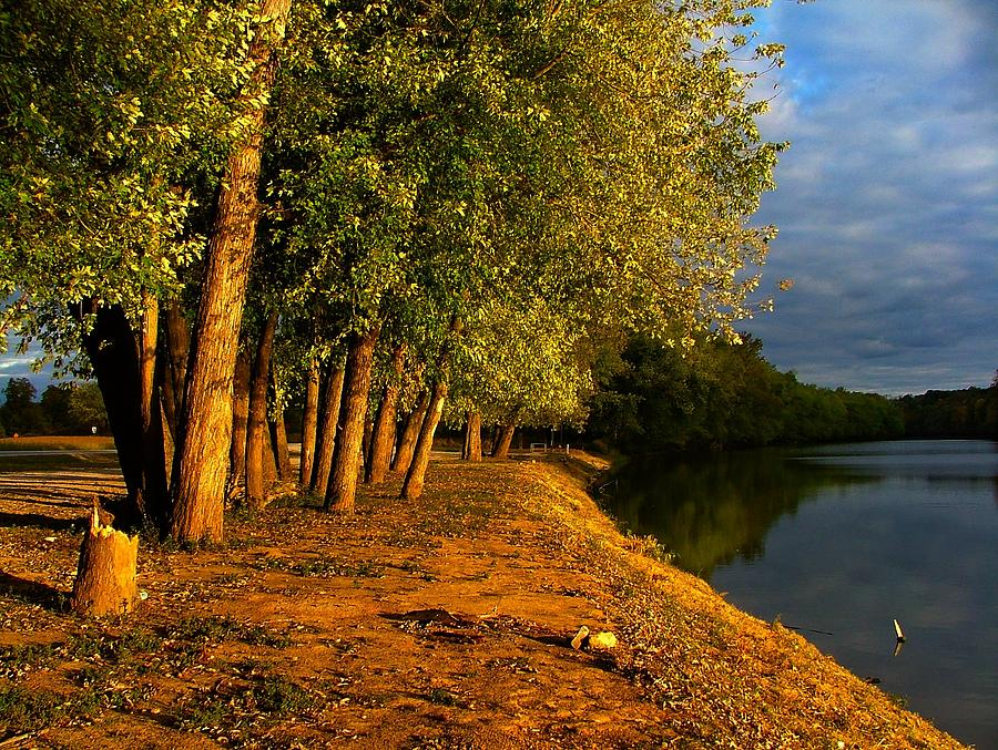 Evening Photograph - Late Evening On White River by Julie Dant