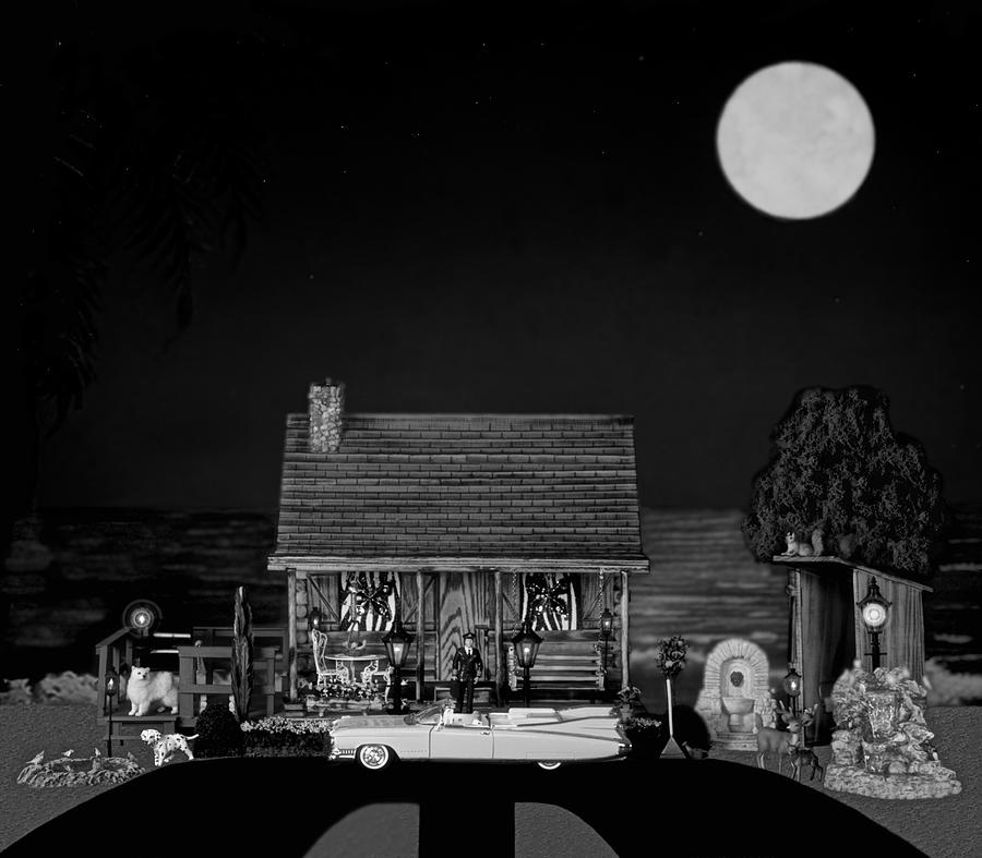 Log Cabin Photograph - Late Flight In Black And White by Leslie Crotty