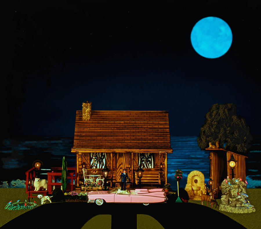 Log Cabin Photograph - Late Flight In Color by Leslie Crotty