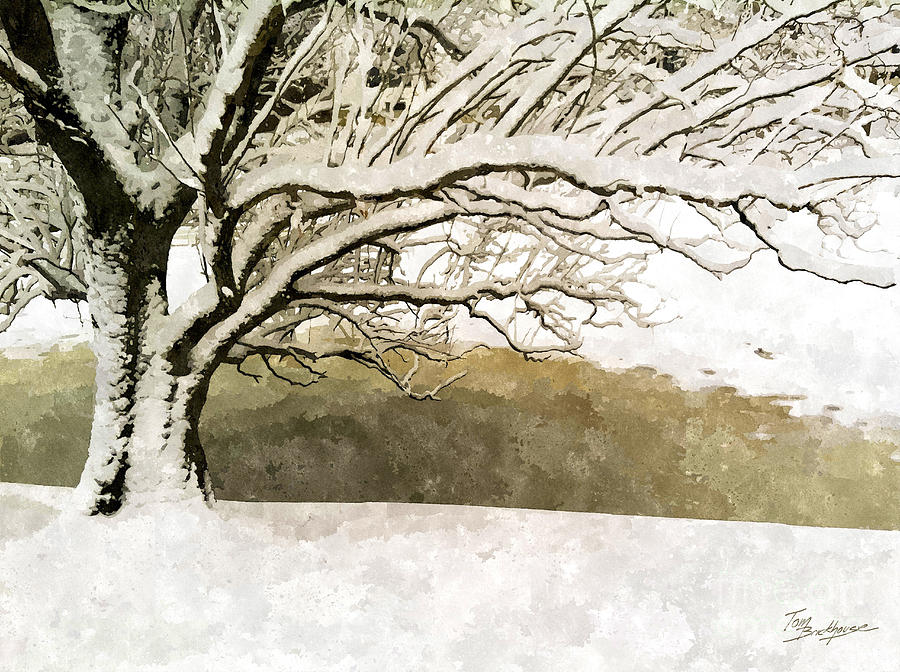 Late March Snow by Tom Brickhouse