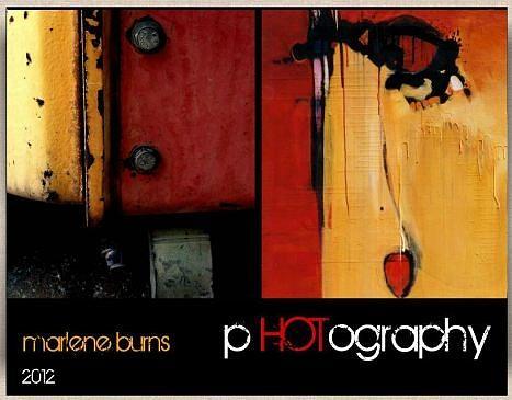Marlene Burns Photography Painting - Latest Book by Marlene Burns