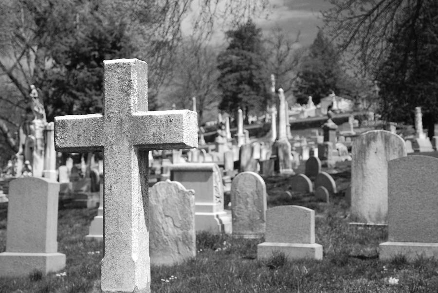 Cemetery Photograph - Laurel Hill by Jennifer Ancker
