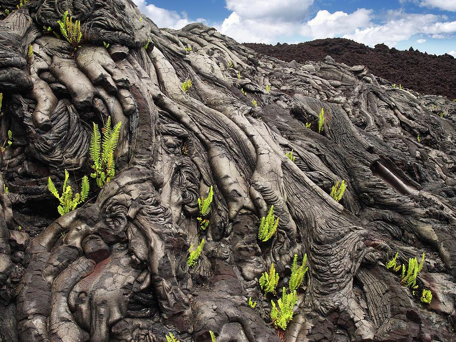 Lava Formations Photograph by Ignacio Palacios