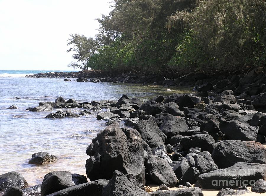 Ocean Photograph - Lava Rocks by Mary Deal