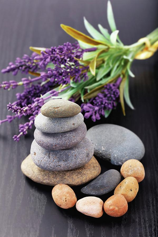 Aromatherapy Photograph - Lavender Aromatherapy by Wladimir Bulgar/science Photo Library