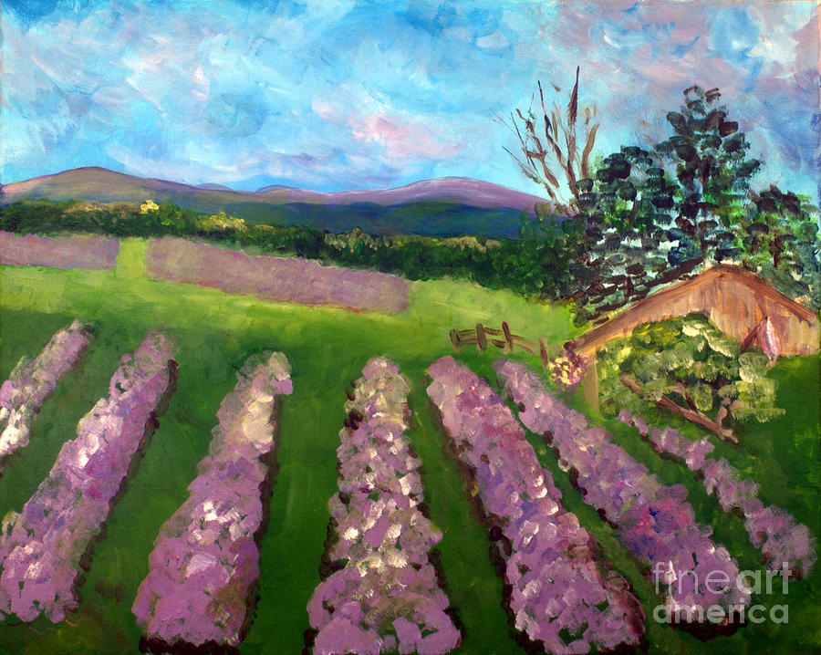 Beautiful Painting - Lavender Fields by Donna Walsh