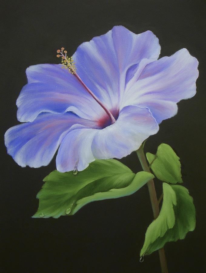 Hibiscus Flower Painting - Lavender Hibiscus by Francine Henderson