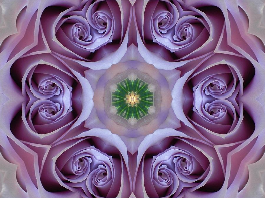 Lavender Rose Mandala by Diane Lynn Hix