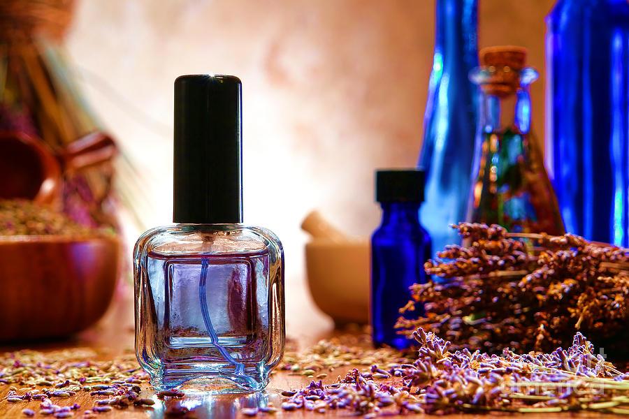 Aromatherapy Photograph - Lavender Shop by Olivier Le Queinec